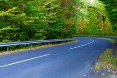 Enrollamiento de la carretera de asfalto a través de las maderas. Imagenes de archivo