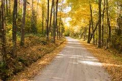 Enrollamiento del camino del otoño a través de las maderas Fotografía de archivo libre de regalías