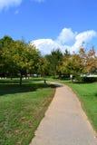 Enrollamiento del camino a través del parque en el verano imagen de archivo