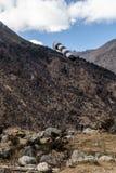 Enrolle el sensor con la montaña negra con la nube en el cielo y la tierra de piedra abajo en el valle de Thangu y de Chopta en i Fotografía de archivo libre de regalías