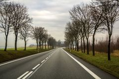Enroulement à deux voies incurvé de route de campagne par des arbres photo libre de droits