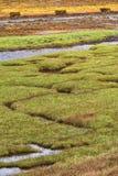 Enroulement de l'eau par des marais de sel, loch Leven, Ecosse images libres de droits