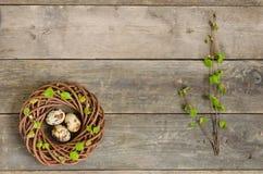 Enrruelle con tres huevos de codornices y ramitas del abedul en el viejo t de madera Foto de archivo libre de regalías