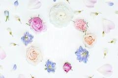 Enrruelle el marco con las rosas rosadas y poner crema, el ranúnculo blanco, delfinios azules, el acacia blanco y los pétalos del Imágenes de archivo libres de regalías