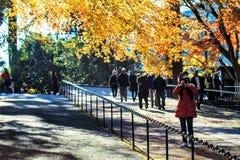 Enryaku-ji ist ein Tendai-Kloster, das auf Berg Hiei in Otsu gelegen ist, Lizenzfreies Stockfoto