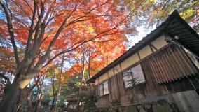 Enryaku-ji is a Tendai monastery Stock Image