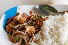 Ensalada asada a la parrilla cortada del cerdo Alimento tailandés - fritada #6 del Stir Fotos de archivo