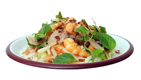 Ensalada asiática con la carne cortada del loto, del camarón y de cerdo en plato fotos de archivo