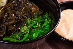 Ensalada asiática de la alga marina con la salsa de la nuez Foto de archivo libre de regalías