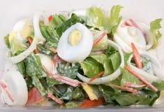 Ensalada César con los huevos, la zanahoria, el tomate, las verduras de la costa, y la cebolla hervidos en una caja Imagen de archivo libre de regalías