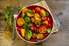 Ensalada colorida del tomate Fotos de archivo libres de regalías