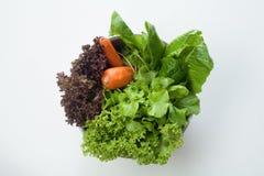 Ensalada, comida sana Fotos de archivo