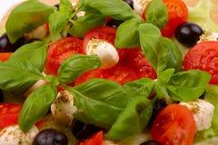 Ensalada con albahaca, la mozarela, las aceitunas y el tomate Imagenes de archivo