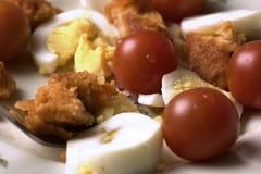 Ensalada con la pechuga de pollo, los tomates de cereza y los huevos Imagenes de archivo
