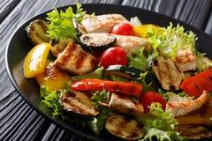 Ensalada con la pechuga de pollo y el primer asados a la parrilla de las verduras del verano Imagen de archivo