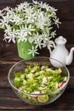 Ensalada con los rábanos, la lechuga, la espinaca y el aceite de oliva en una tabla de madera Foto de archivo