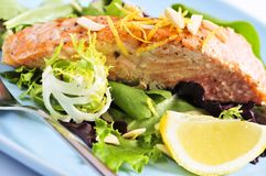 Ensalada con los salmones asados a la parilla Fotografía de archivo