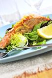 Ensalada con los salmones asados a la parilla Foto de archivo libre de regalías