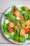 Ensalada con los salmones, la espinaca y la mozzarella Imágenes de archivo libres de regalías