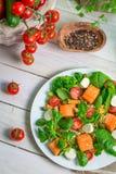 Ensalada con los salmones y las verduras Imagenes de archivo