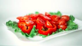 Ensalada con los tomates de cereza y las pimientas rojas Fotografía de archivo libre de regalías