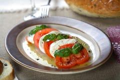 Ensalada con los tomates y el queso Imágenes de archivo libres de regalías