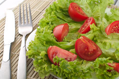 Ensalada con los tomates y la ensalada Imagen de archivo