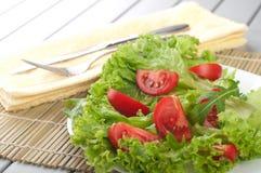 Ensalada con los tomates y la ensalada Fotos de archivo libres de regalías