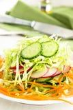 Ensalada de col fresca con el pepino, la zanahoria y los rábanos en un whi Imagenes de archivo