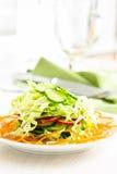 Ensalada de col fresca con el pepino, la zanahoria y los rábanos en un whi Fotografía de archivo libre de regalías