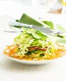 Ensalada de col fresca con el pepino, la zanahoria y los rábanos en un whi Imagen de archivo libre de regalías