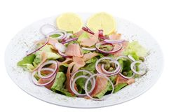 Ensalada de color salmón Fotografía de archivo