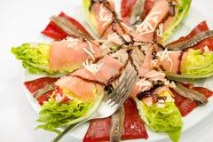 Ensalada de color salmón de la anchoa de la comida Foto de archivo libre de regalías