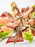 Ensalada de color salmón de la anchoa de la comida Imagen de archivo