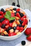 Ensalada de fruta con la menta imagen de archivo
