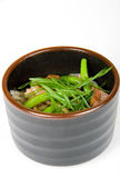 Ensalada de Japón Imagen de archivo libre de regalías