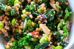 Ensalada de la col rizada de la quinoa de la dieta de Paleo Imagenes de archivo