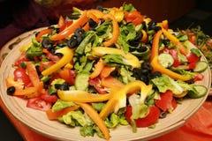 Ensalada de la dieta Foto de archivo libre de regalías
