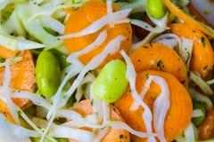 Ensalada de la ensalada de col Imagen de archivo