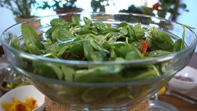 Ensalada de la espinaca con los tomates y el paprika que giran, 4K almacen de video