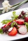 Ensalada de la fresa del rábano Fotos de archivo libres de regalías