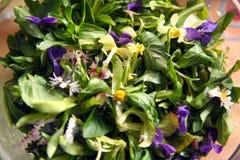 Ensalada de la primavera Fotos de archivo