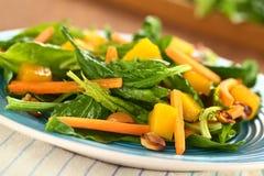 Ensalada de la zanahoria del mango de la espinaca fotografía de archivo libre de regalías
