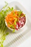 Ensalada de la zanahoria y del rábano con p Imagen de archivo libre de regalías
