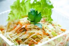 Ensalada de las verduras con la col y la zanahoria Foto de archivo