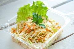 Ensalada de las verduras con la col y la zanahoria Imágenes de archivo libres de regalías