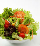 Ensalada de las verduras frescas Fotos de archivo libres de regalías