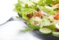 Ensalada de las verduras frescas Foto de archivo libre de regalías