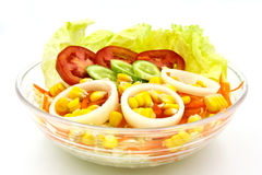 Ensalada de las verduras frescas Imagen de archivo