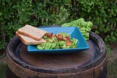 Ensalada de las verduras frescas, comida sana, tomates y hojas de la ensalada Ensalada de pollo sana con las verduras frescas Imágenes de archivo libres de regalías